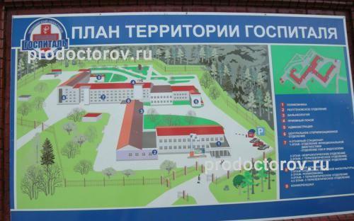 Фотографии областного