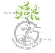 Поликлиника кировского района спб по адресам