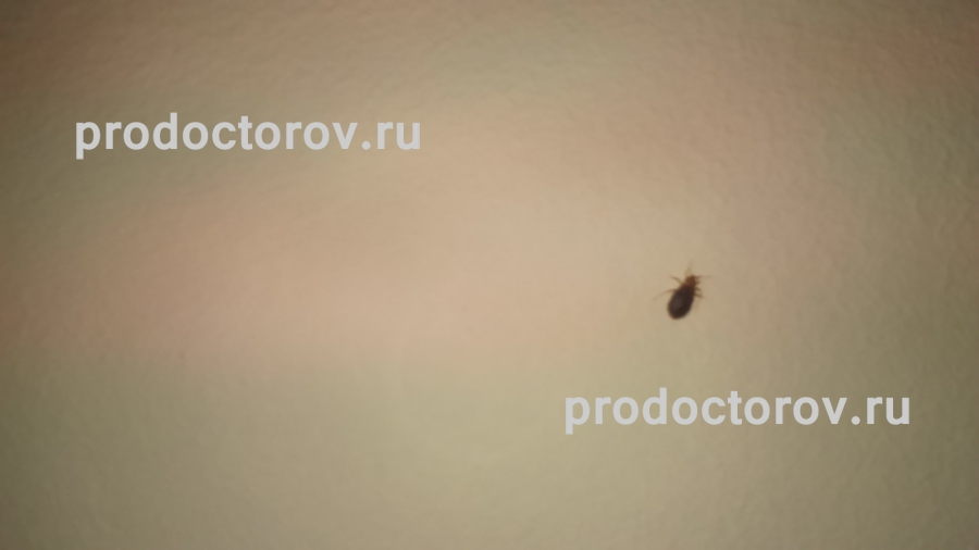 Киевский медицинский центр офтомед