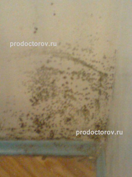 Стоматологическая клиника на василеостровской
